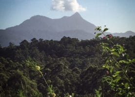 Mount Warning is known by the original tribes as Wollumbin, which means of course 'Cloud Catcher'.